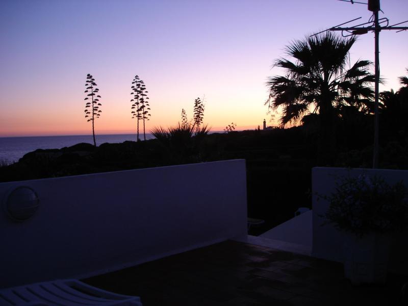 sunset over the garden