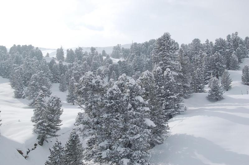 mountain impressions