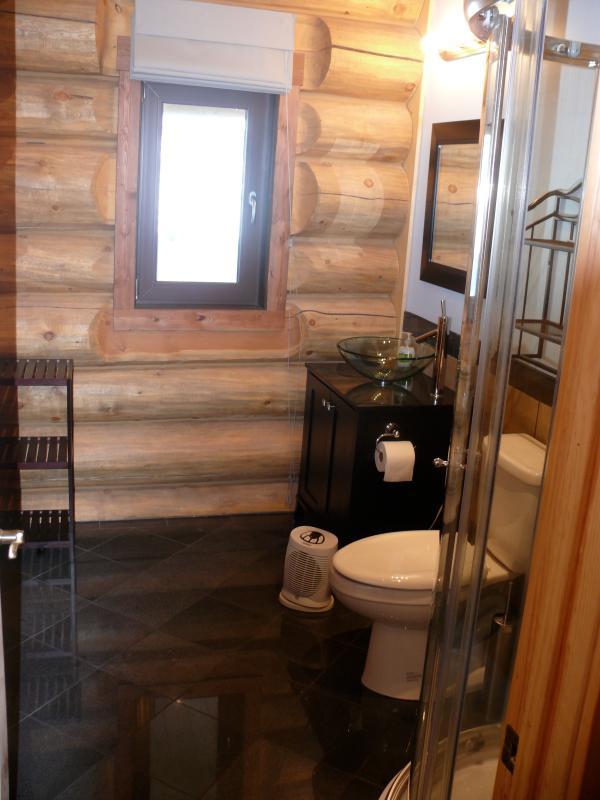 Main floor bathroom with shower
