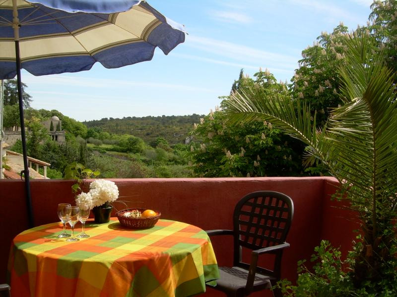 Center of town with valley views, vacation rental in Uzes