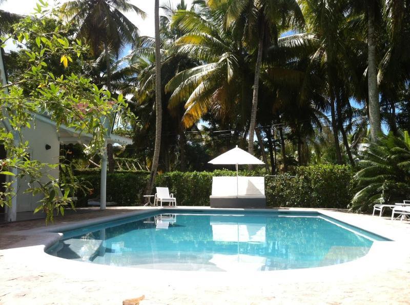 Renovada piscina 12 x 6 m en cemento gris