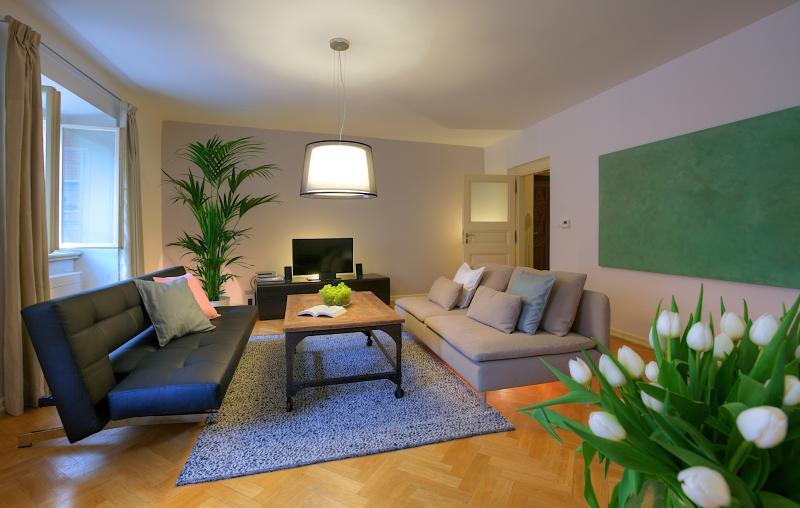 Superior Appartement met 1 slaapkamer | Praag