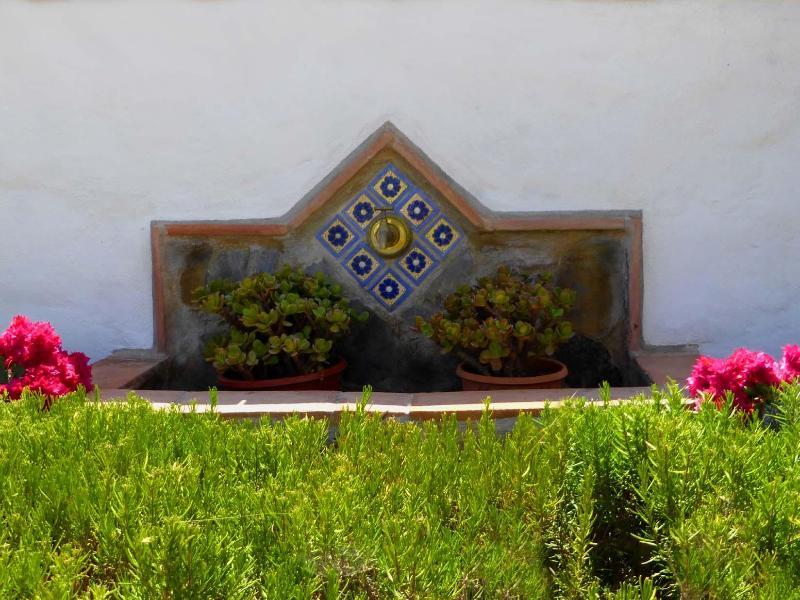 Herb Gardens, Tyme,Rosemeny, Mint Etc.