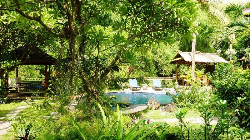 your green oasis: tropical garden with high bamboo trees in the back