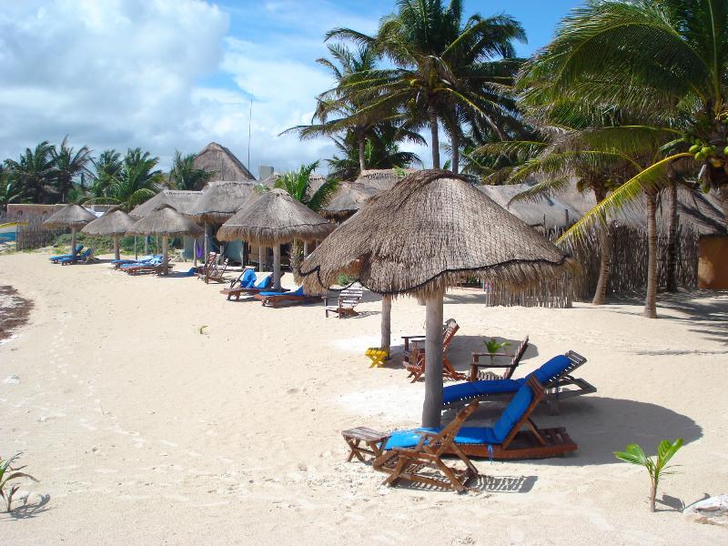 View Of The Beach In Front Of Condo del Arbol.