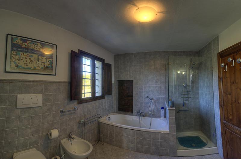 Casanuova di Cignano, holiday rental in Certaldo