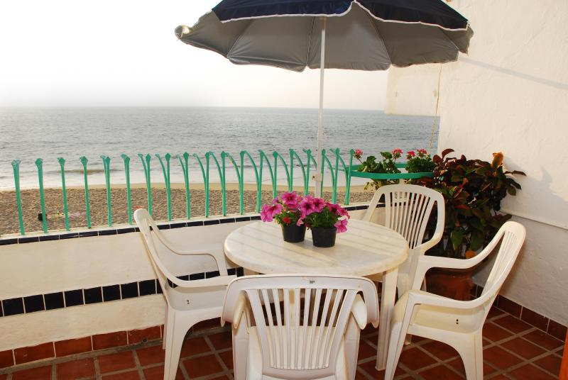 Sundeck/ Terrace Off Living Room -- Great Place for Breakfast or Evening Drinks!