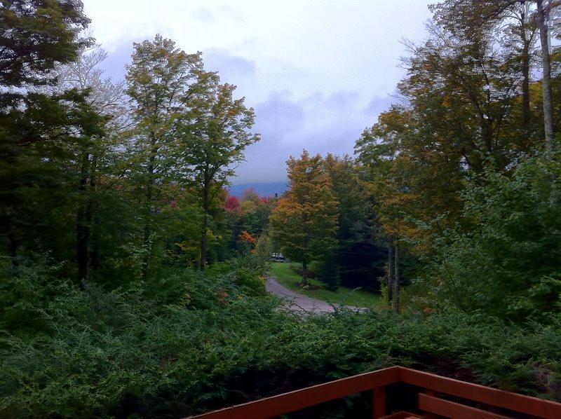 A view from the front deck in early fall