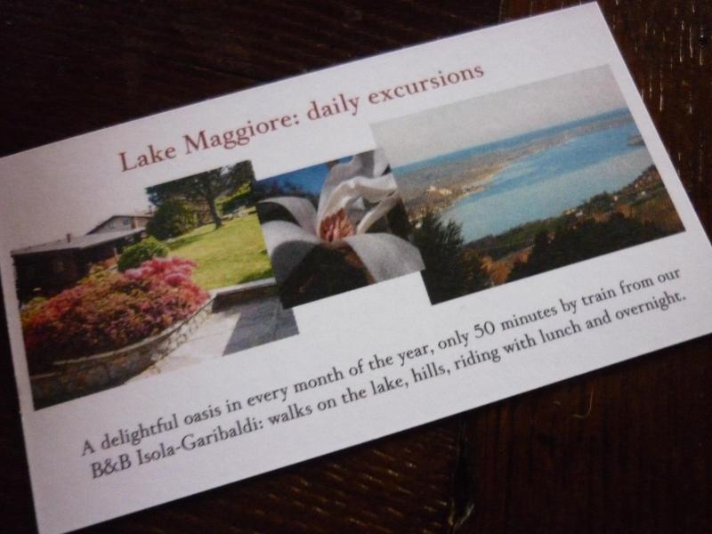Holiday Lake Maggiore Arona Villa Garden View Lake, casa vacanza a Fosseno