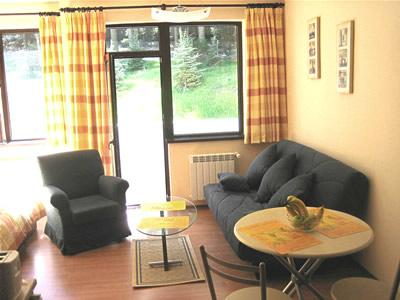 Modern studio apartment, vacation rental in Borovets