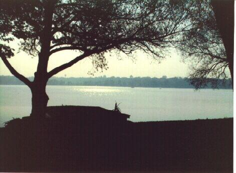 View from cottage toward water.