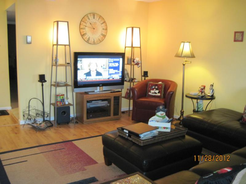den with 42' lcd TV