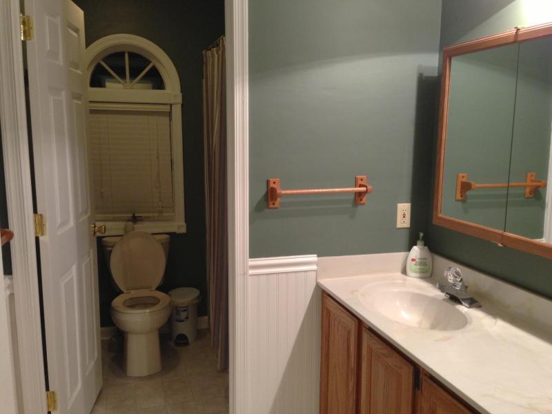 Principal casa de banho com duche e banheira