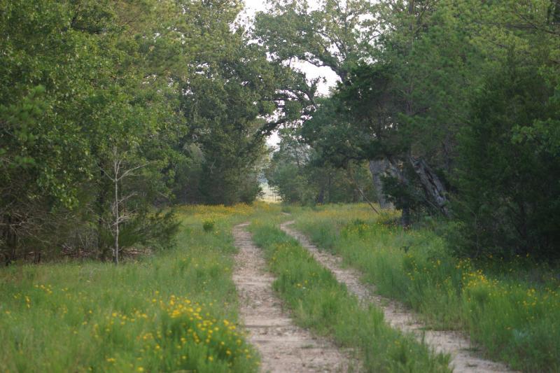 .. .et niché parmi les pins, chênes et cèdres est votre escapade tranquille