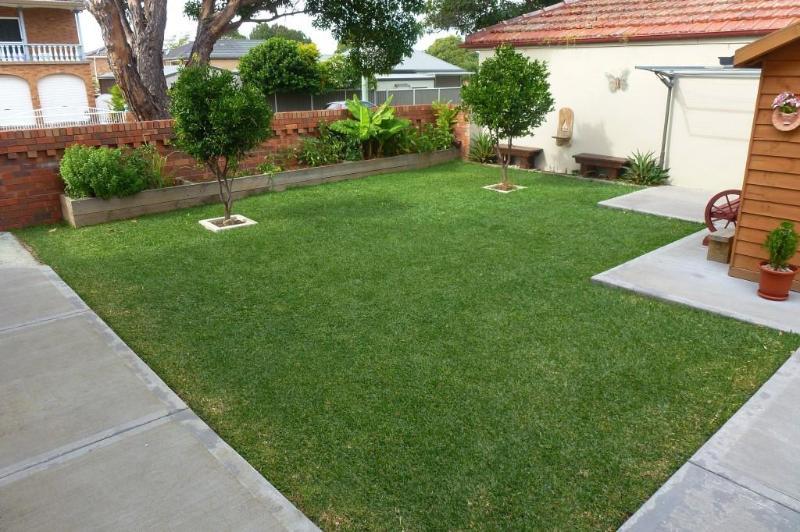 Rear Yard / Garden