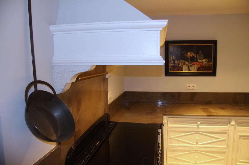 Mas du Temple - 30190 Garrigues Sainte Eulalie - kitchen