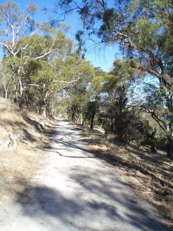 Hobart's most popular easy flat bushwalk just outside the back of the property