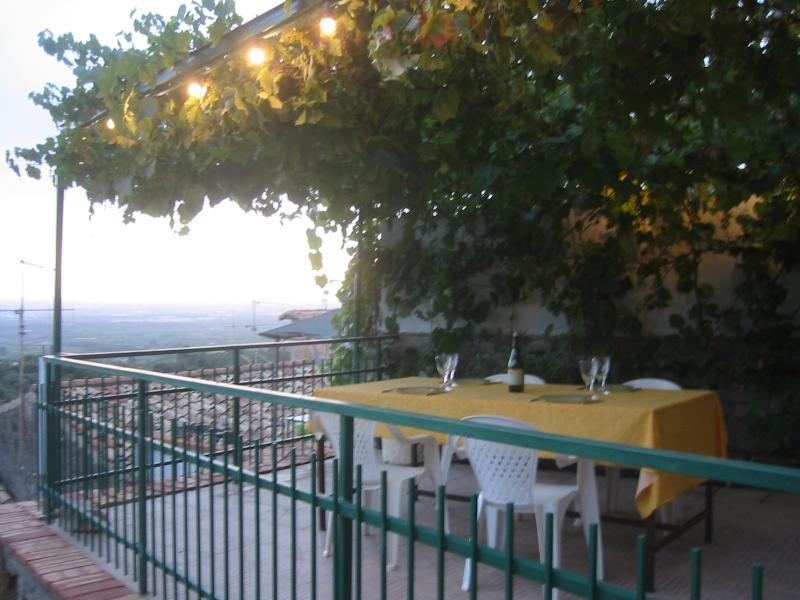 The terrace under the wines