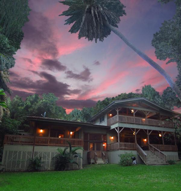 Tropical Luxury at the Banyan House