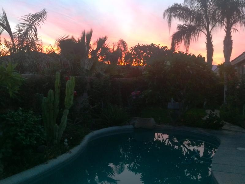 sunset in your private backyard