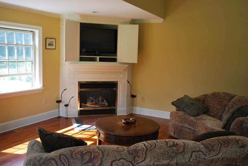 Gas Fireplace and HD TV