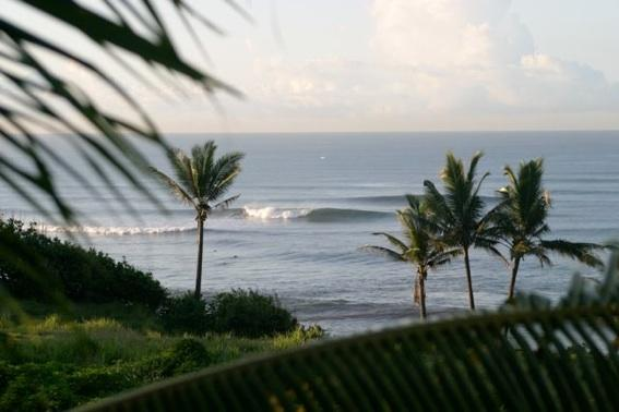 Bali surf beach bungalow on relaxing Balian beach, holiday rental in Pekutatan