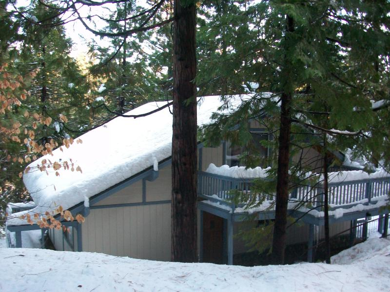 Winter View of the Cabin