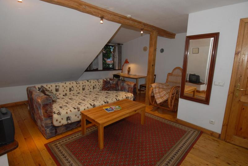 Living room with wide sofa (for sleeping for third person)