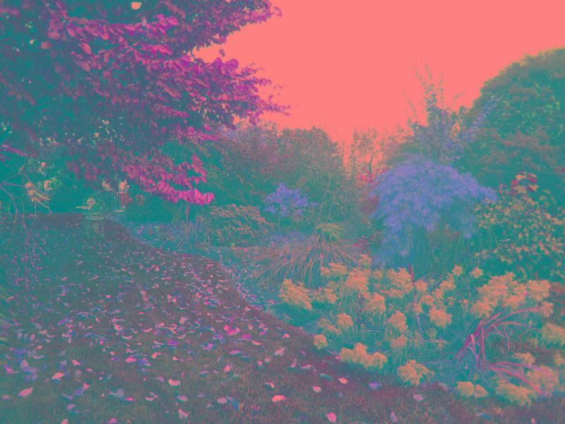 garden magnifique!!!