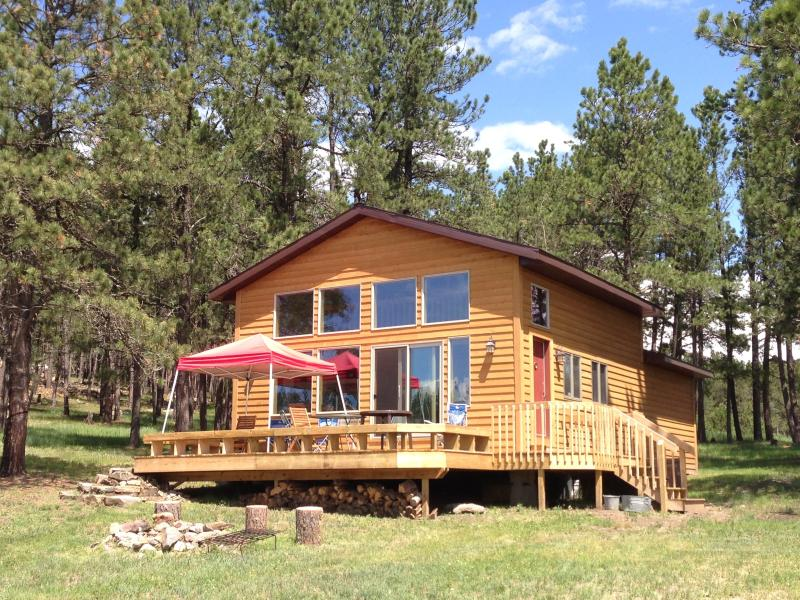 Custer Cabin - Newly Renovated, Upgraded Fiber Internet, Roku, holiday rental in Custer