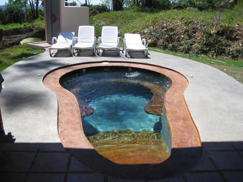 la piscina con jacuzzi - una parte de la entretenida...