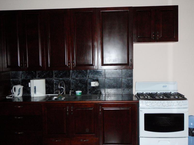 estufa de la cocina al aire libre,