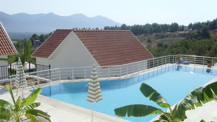 View of the pool, forest and mountains