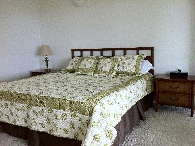 Master bedroom with king size bed and iHome alarm clock with iphone/ipad dock.