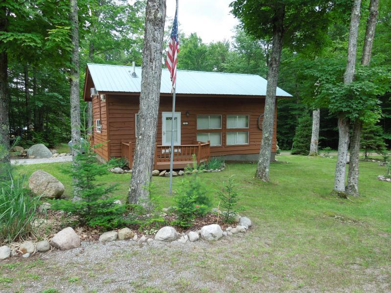 Adirondack Vacation Cabin – semesterbostad i Thendara