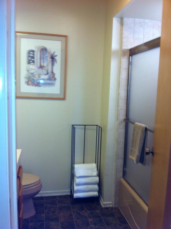 Cuarto de baño con bañera y ducha en 1ª planta