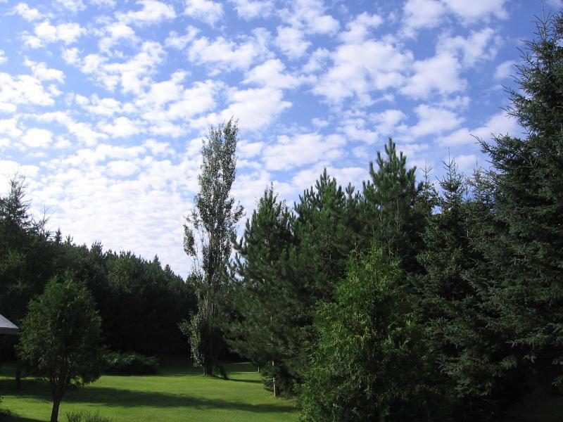 Domaine 4 Saisons - Belle journée d'été