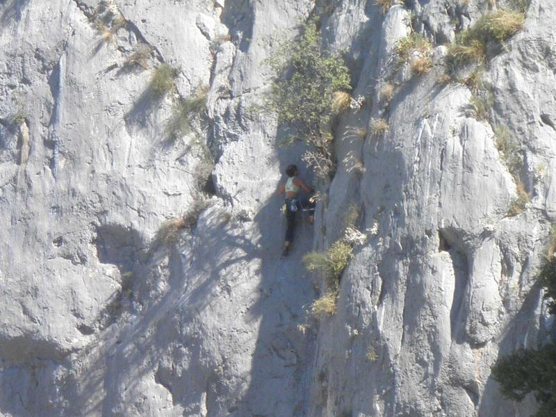 Free climber