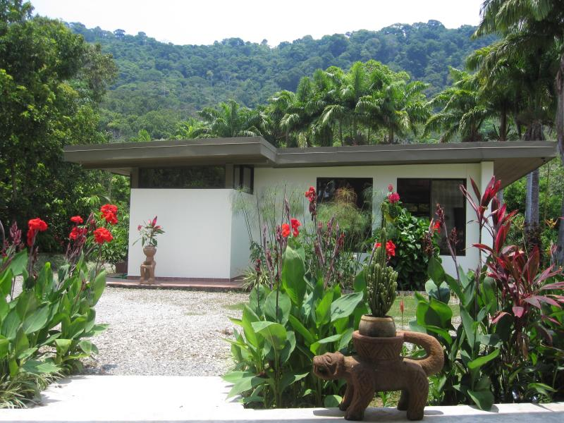 Guest House and our private jungle in the back