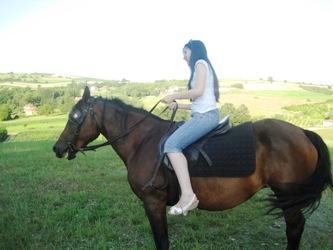 gast leert paardrijden