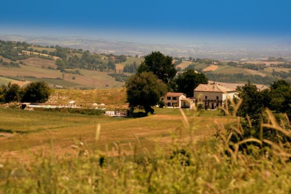 Cottage Catria, holiday rental in Montefortino