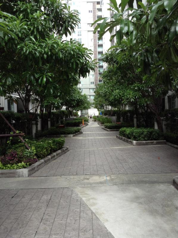 Garden in front of aprtment buidling