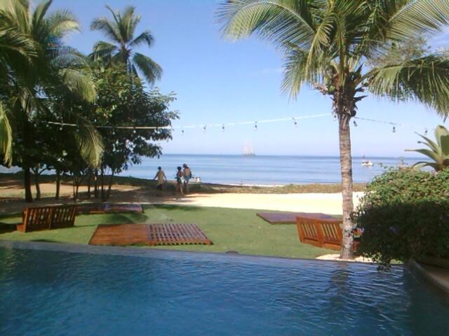 Beach Club ocean front infinity pool