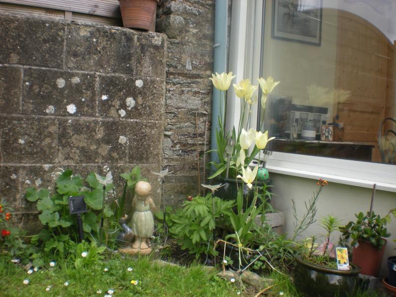 Le joli jardin.