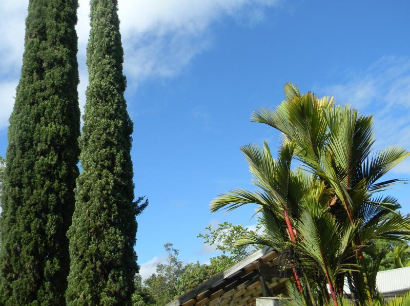 Céu azul acima a casa de hóspedes