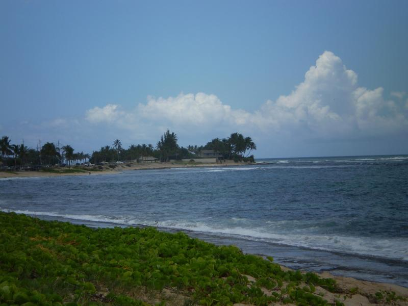 Ma`ili Beach south view to the point, a surf spot.   two miles of golden beach park to enjoy.