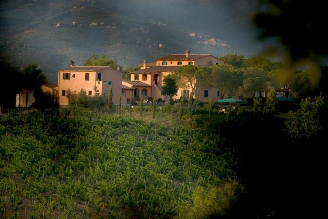 Agriturismo La Colombaia - 2 bedroom apt, vakantiewoning in Cerreto Guidi