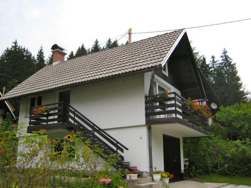One Bedroom Apartment Jezersko, holiday rental in Sticna