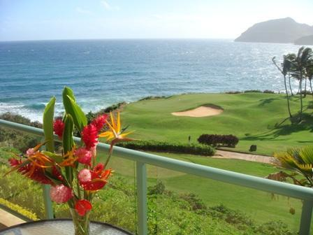Flowers on our lanai with golf, bay, and mountain view