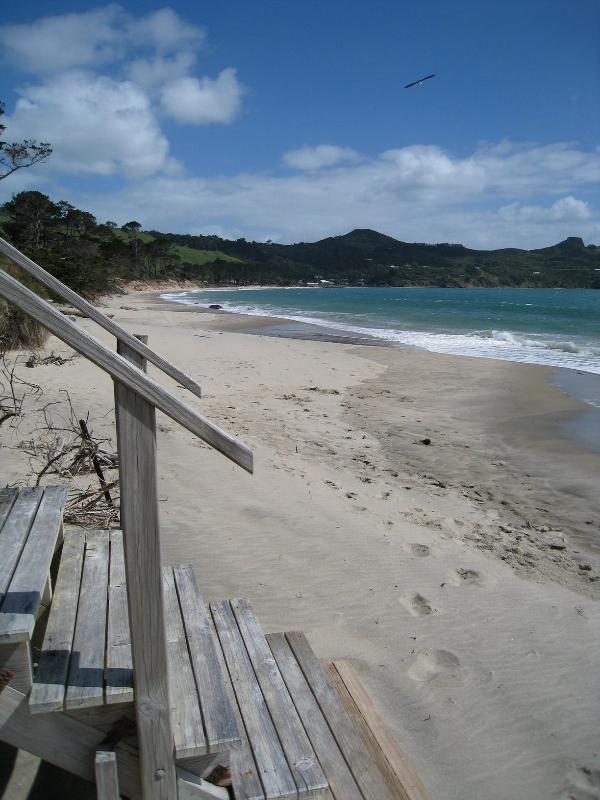 Omapere Beach South from stairway